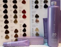 48 Tinturas Caviar Color Complex + 4 Reveladores Caviar + Carta
